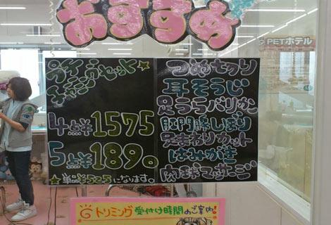 20120310_01.jpg