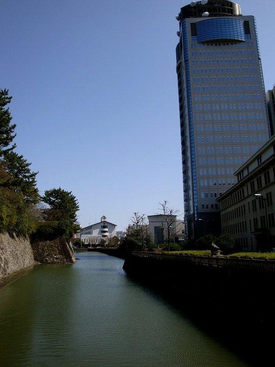 20090312-4.jpg