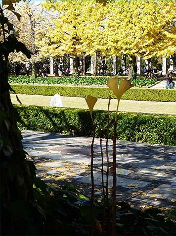 昭和公園06