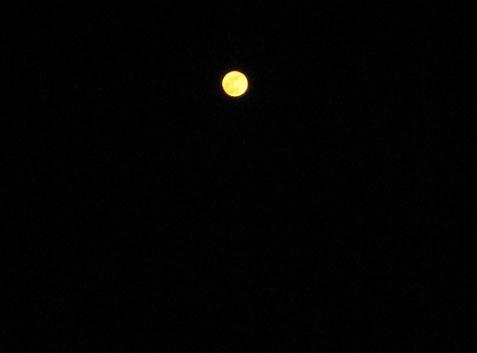月の道02