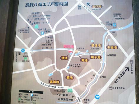 忍野八海09