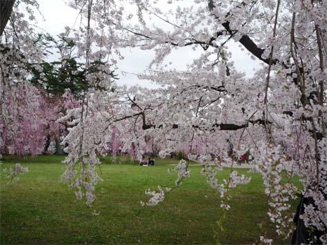 弘前公園05