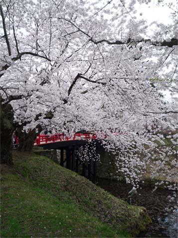 弘前公園06