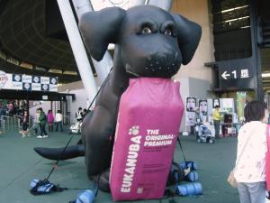20091115-1.jpg