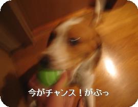 20071102005458.jpg