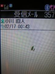 DSCN0401.jpg