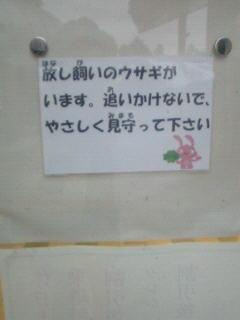 NEC_1330.jpg