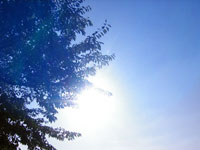 sky08_2.jpg