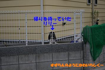 2008/06/14 その3