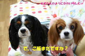 2008/06/27 その2