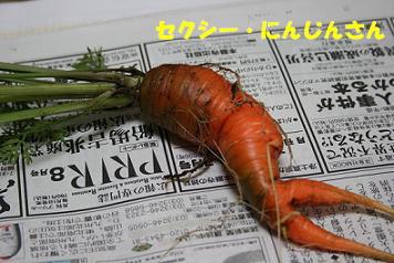 2008/07/01 その1