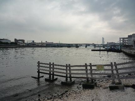 貝浜干潟からの河口方面