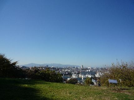 成瀬山吹緑地
