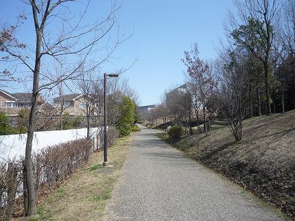 都筑緑道2