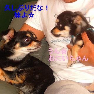 20060920104857.jpg