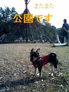 20061104201441.jpg