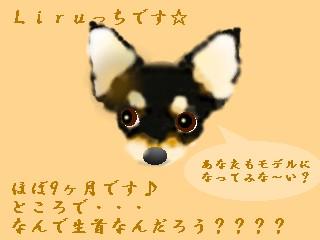 20070108222150.jpg