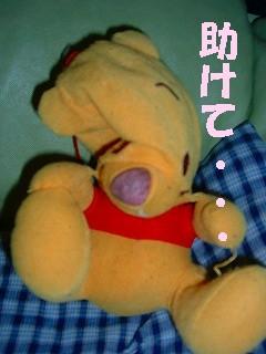 20070117010341.jpg