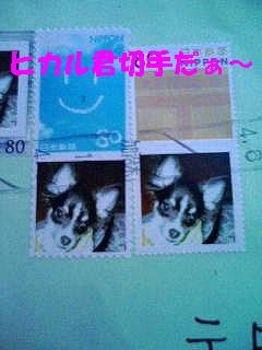 20070409230133.jpg