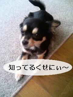 20070521232104.jpg