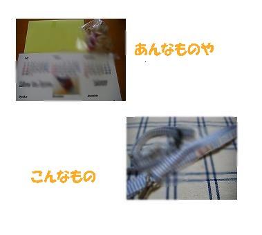 20070614012300.jpg