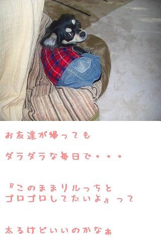 20071205163736.jpg
