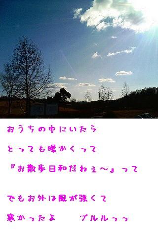s-公園の空
