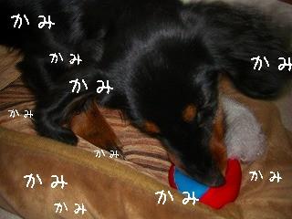 s-破壊活動①