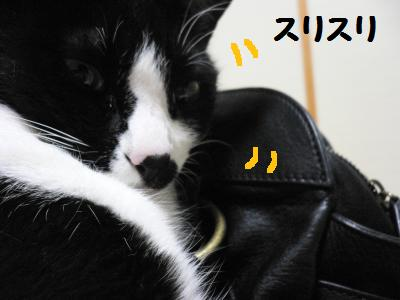 黒革の鞄04