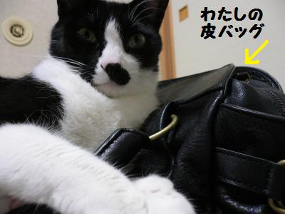 黒革の鞄01