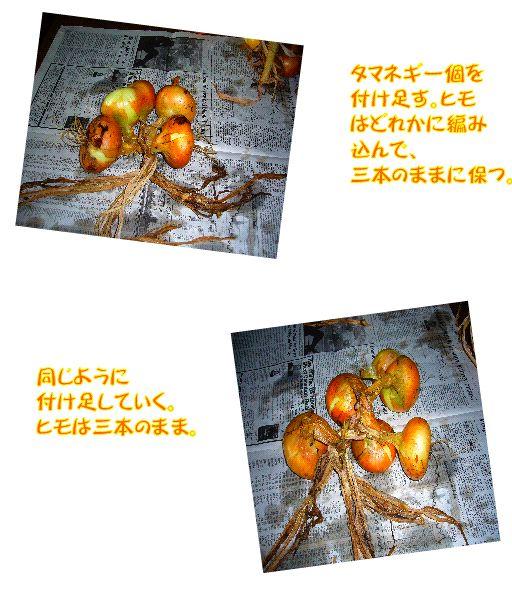 driedfood3.jpg