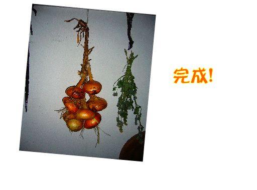 driedfood4.jpg