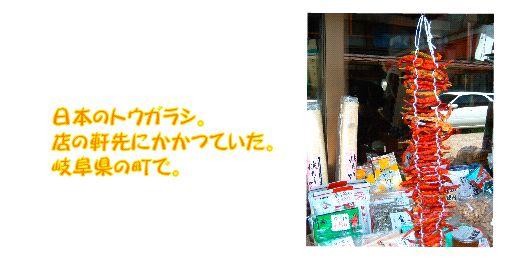driedfood6.jpg
