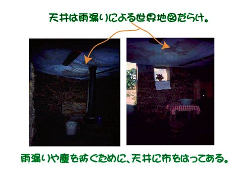 dugout4.jpg