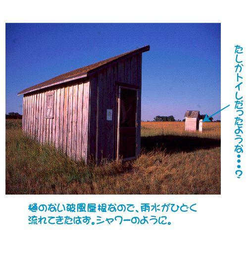 shanty2.jpg