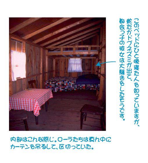 shanty3.jpg
