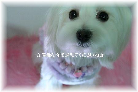 s-Img_9796i.jpg
