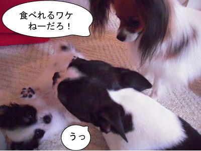 gazou-0189517.jpg