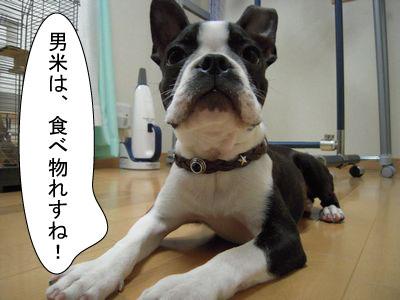 gazou-0548148436.jpg