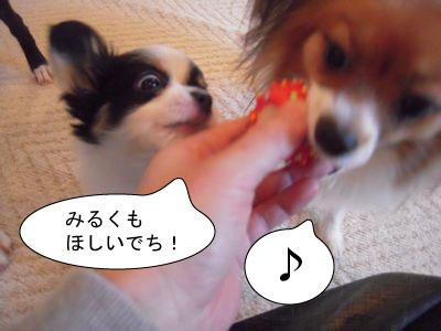 gazou-0727184.jpg