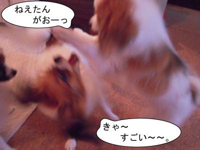 gazou-3649.jpg