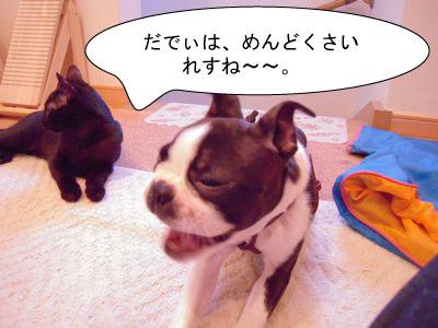 gazou-368687184.jpg