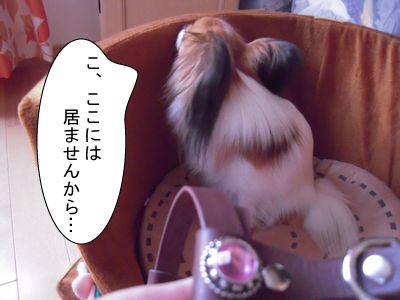 gazou-498951147.jpg