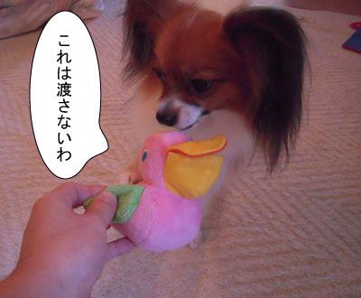 gazou-53155879.jpg