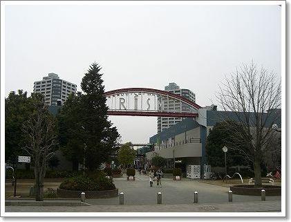 20080209_1.jpg