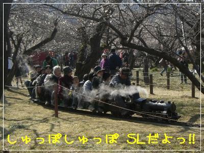 20080308_4.jpg
