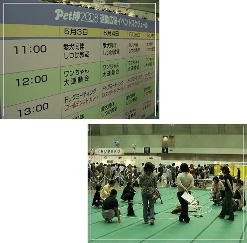 20080503_3.jpg