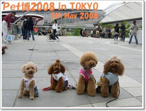 20080503_4.jpg