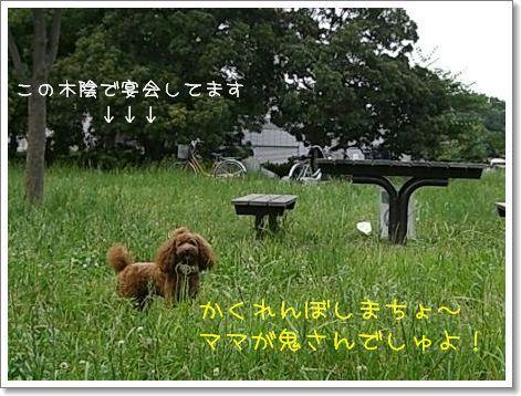20080614_3.jpg