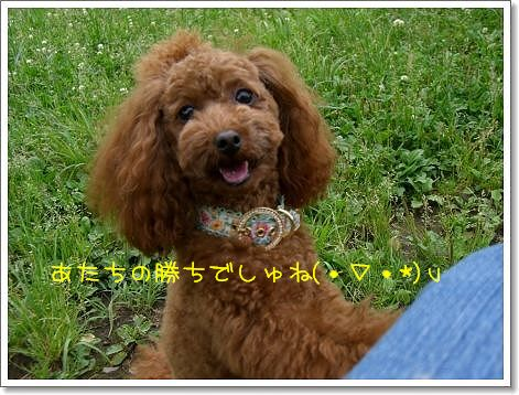 20080614_4.jpg